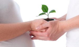 Лечение бесплодия - гинекологический массаж